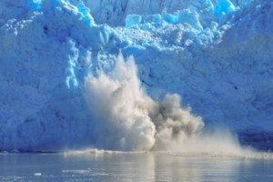 Glacier Calving www.njcharters.com