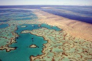Aerial view of Heart Reef in the Great Barrier Reef far north Queensland Australia