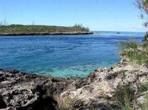 Bahamas Current Cut www.njcharters.com
