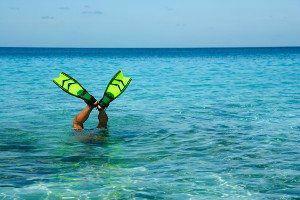 Bahamas www.njcharters.com