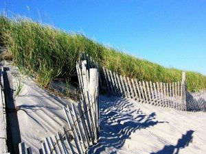 Cape Cod Beaches www.njcharters.com