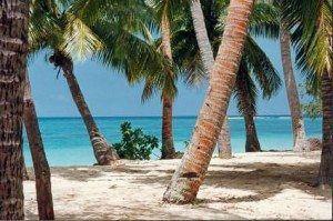 Fiji Blue Lagoon www.njcharters.com